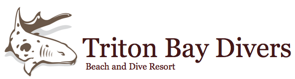 Triton Bay Divers