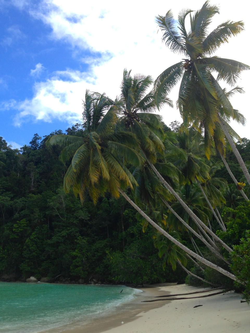 Beach in Triton Bay